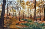 autumn trees painted by Pat Harrison