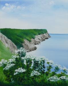 cliffs at Berry Head, Brixham, Devon, England