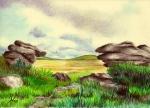 Combe Stone, Dartmoor Tor