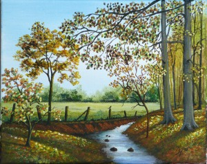 creek passing through the woods in autumn