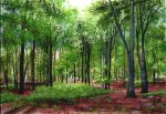 painting of a forest in the summer sunshine
