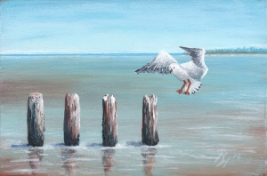 seagull painted by Pat Harrison